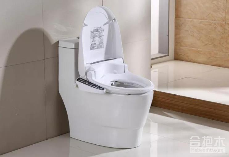 住宅装修设计,卫生间马桶,