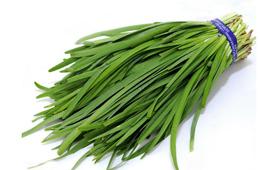 合抱木家居资讯-韭菜的功效与作用有哪些?韭菜割了又能长?