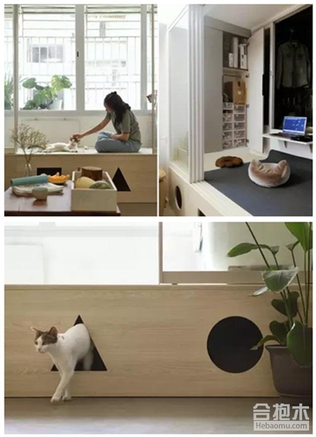 榻榻米+猫洞